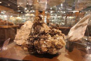 musee-mineralogique-de-l-ecole-des-mines-d-Ales