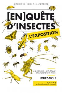 enquete insectes carrefour sciences arts